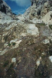 Heliotrope Falls